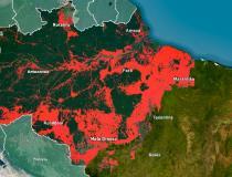 França recua sobre o acordo UE-Mercosul: Não ao desmatamento da Amazônia