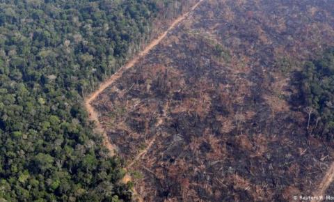 DESMATAMENTO RECORDE NA AMAZÔNIA EM JUNHO