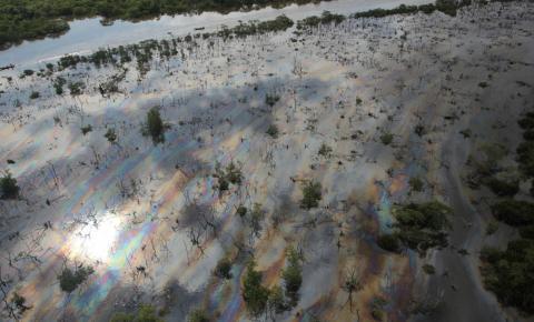 Descaso com a Baía de Guanabara causa impactos na saúde, no transporte e no turismo e provoca prejuízo de bilhões ao RJ, alerta ONG